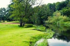 Wilder Fluss auf dem Land Stockfotografie