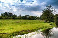 Wilder Fluss auf dem Land Stockfoto