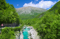 Wilder Fluss in den Alpen (Soca/Isonzo) Stockfoto