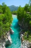 Wilder Fluss in den Alpen (Soca/Isonzo) stockfoto
