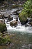 Wilder Fluss und Wasserfall Stockfotos