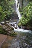 Wilder Fluss und Wasserfall Lizenzfreie Stockfotografie