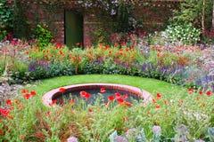 Wilder Garten Lizenzfreies Stockfoto