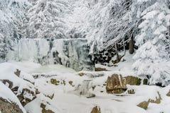 Wilder gefrorener Wasserfall Stockbilder