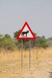 Wilder Hundezeichen Stockfotos