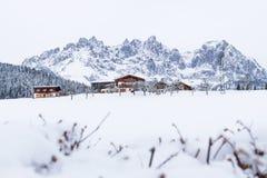 Wilder Kaiser mountainrange med snö och filialer, gående f.m. Wilden Kaiser, Tyrol, Österrike Royaltyfri Fotografi