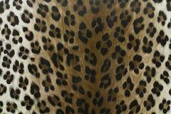Wilder Leopardmusterhintergrund oder -beschaffenheit lizenzfreie abbildung