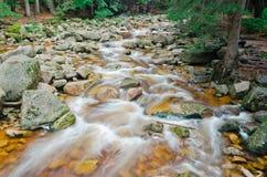 Wilder Nebenfluss Mumlava Lizenzfreie Stockbilder