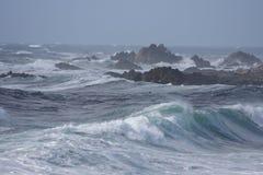 Wilder Ozean Stockbild
