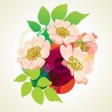 Wilder rosafarbener Blumenstrauß. Stockfoto