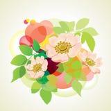 Wilder rosafarbener Blumenstrauß. Lizenzfreies Stockfoto