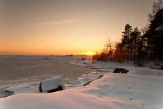 Wilder schwedischer Winter Lizenzfreies Stockbild