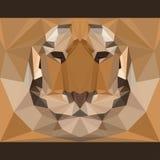 Wilder Tiger starrt vorwärts an Natur und Tierlebenthemahintergrund Abstrakte geometrische polygonale Dreieckillustration Stockfotos