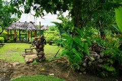 Wilder tropischer Garten in Ozeanien mit Kokosschalen, exotischer Vegetation und fales, Samoa lizenzfreies stockfoto
