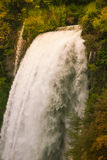 Wilder Wald und Wasserfall in Italien Lizenzfreie Stockfotos