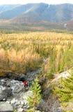 Wilder Wasserfall stockbilder