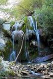 Wilder Wasserfall innerhalb eines Waldes lizenzfreies stockfoto