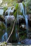 Wilder Wasserfall innerhalb eines Waldes lizenzfreie stockfotos