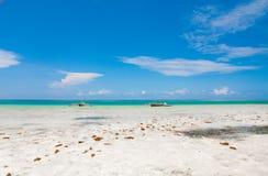 Wilder weißer Strand in Sansibar Stockfoto