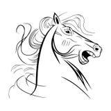 wilder wiehernder Pferdenaher hoher Kopf stockbild