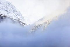 Wildernes landskap Arkivbilder