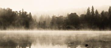Wilderness湖在一个有雾的夏天早晨 免版税库存照片