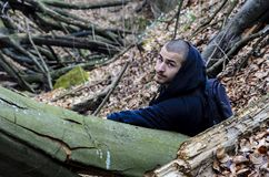 Wilderness Stock Image
