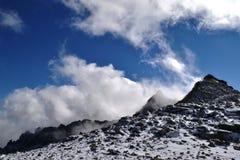 wilderness Foto de Stock Royalty Free