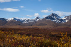 Tundra in Fall. Wilderness of Alaska tundra in late fall with snow on mountains Stock Photo