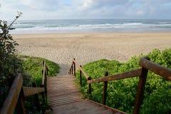 Wilderness Boardwalk Stock Photography