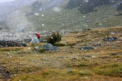 Wilderness Camping in Snowstorm Stock Images