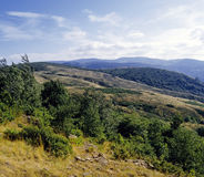 Wilderness country cevennes Stock Images