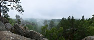 Wilderness forest in fog and rain, panoramic view. Wilderness forest in fog and rain with wet stones, panoramic view Stock Images