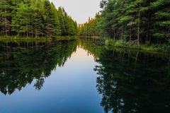Wilderness Forest River Reflections. River flows through the wilderness of Michigan's Upper Peninsula forest. The river flows from Kitch iti kipi spring into Stock Photo