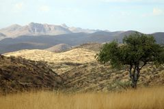 Free Wilderness In Namibia Royalty Free Stock Photos - 2145428