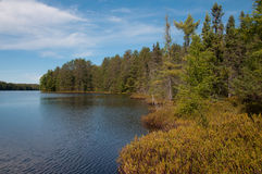 Wilderness Lake. The beautiful boggy shoreline of a wilderness lake in the northwoods of Wisconsin Stock Photography