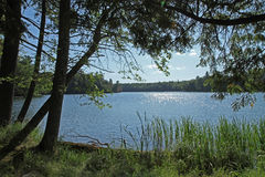 Wilderness Lake in Bright Sunshine Royalty Free Stock Photos