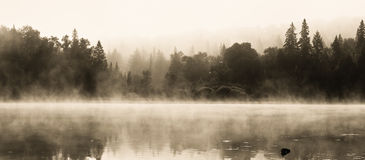 Wilderness Lake in a foggy summer morning Royalty Free Stock Photos