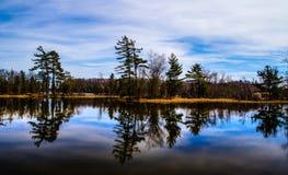 Wilderness Lake Reflections. Pine tree reflections in a pristine wilderness lake  Ludington State Park.  Ludington, Michigan Stock Photos