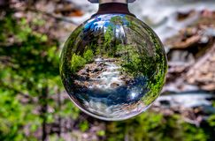 Wilderness Life Through the Eye of the Lensball stock photos