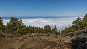 Wilderness, Mountain, Mountainous Landforms, Tree Royalty Free Stock Image