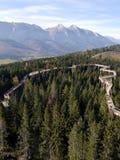 Wilderness, Mountain, Mountainous Landforms, Tree Stock Photos