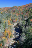 Wilderness Mountain River in Autumn (Vertical) Royalty Free Stock Photo