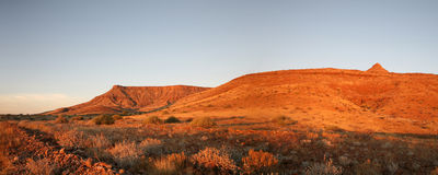 Wilderness in Namibia Royalty Free Stock Image