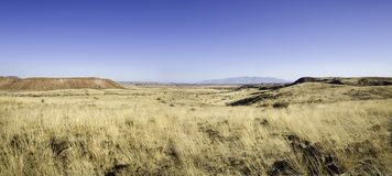 Wilderness in Namibia Royalty Free Stock Images