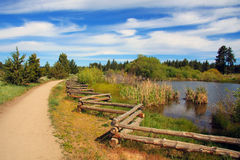 Wilderness Path. Beautiful dirt pathway next to a pond in a mountain meadow Stock Photos
