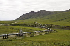 Wilderness pipeline view. A view of the Alaska oil pipeline in the wilderness royalty free stock photography
