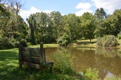 Wilderness pond stock photo