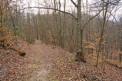 The Wilderness Road Heading Down from the Cumberland Gap Stock Photo