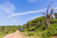 Wilderness Safari Vehicle Wildlife Dirt Road Stock Photography